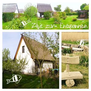 Photo for Idyllic thatched cottage on the old Peene