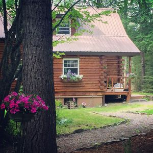 Photo for Swan Cottage, Delightful private log cabin
