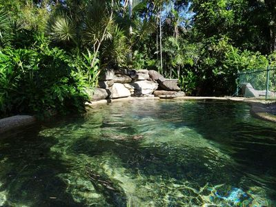 Secluded salt water swimming pool in a tropical setting