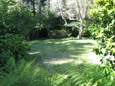 Photo for Serenity In The Gulch Only 5 Minutes From Historic Mendocino Village
