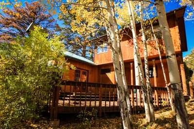 View of front deck from front yard filled with Aspen trees.