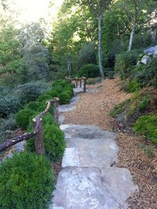 Path from Trickledown to Big Creek
