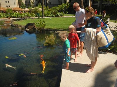 Feeding the Koi...the grounds of the property are immaculate