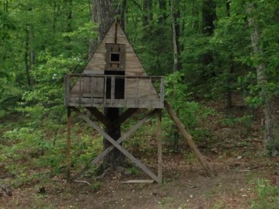Tree House for the kids or grownups!