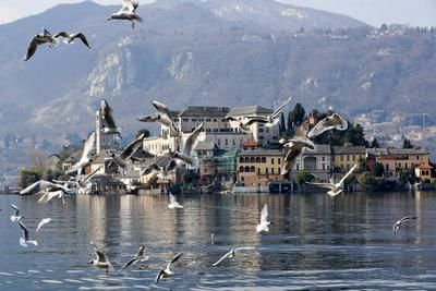 Photo for Holiday apartment Orta San Giulio for 2 - 4 persons with 2 bedrooms - Holiday apartment