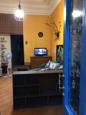 Cosy Oasis Apartment in old Tbilisi