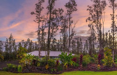 Photo for HOUSE OF PALMS - Hawaiian Paradise Park, Puna Coast, Big Island, HI