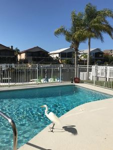 Photo for Spacious Executive Waterfront Home with private pool & dock on canal.