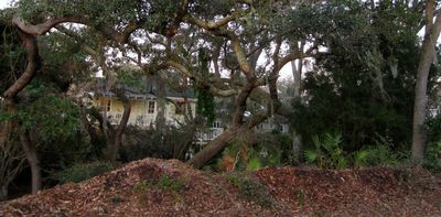 Quietly nestled in a beautiful group of Live Oak trees.