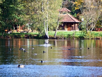 Photo for Apartment Vacation Rental in Ludwigswinkel
