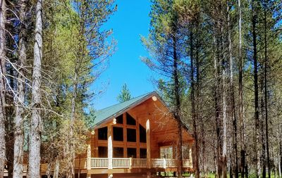 Photo for Island Pines - Spectacular New Lodge near Yellowstone on Island