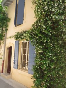 Photo for BEAUTIFUL HOUSE HISTORICAL CENTER D'ARLES