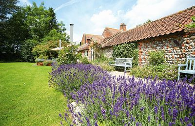 Photo for Pear Tree Cottage  is surrounded by unrivalled views of open North Norfolk countryside.