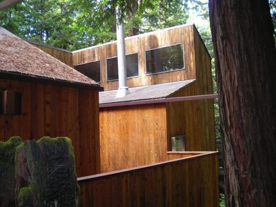 Photo for The Redwood House in the Redwoods