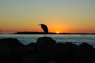 Sunset from the jetties