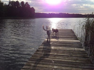 Photo for Forsthaus Metzelthin - vacation with your dog