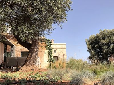 Photo for Lamia dal blu, Villa between the olive trees and the sea