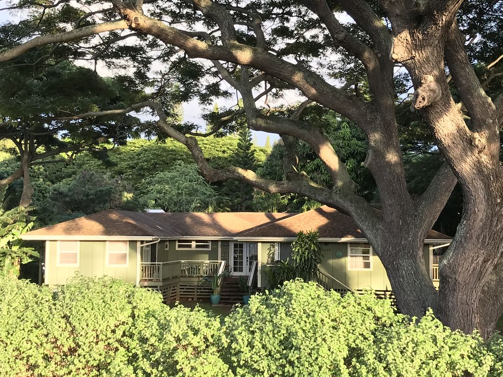 4 Bedroom Spacious Plantation-Style Home! Gas BBQ, Wi-fi, Cable TV on puerto rico plantation homes, old korean village, old hawaiian churches, old south plantation in ruins, hawaiian theme homes, old hawaiian homes metal roof, hawaiian style homes,