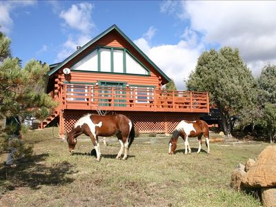 Photo for Beautiful Log Home on Five Acres with Horse Facilities!