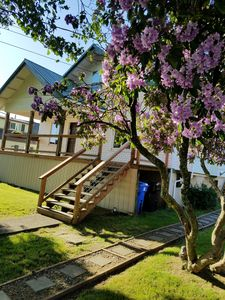 Photo for In the heart of Tillamook - walk downtown  & hospital - 30 days min stay