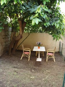 Photo for Apartment with garden in the city center 5 minutes from the beach