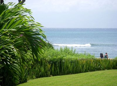 View from your lani (patio)