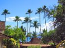Ocean view and palm trees from the  upper lanai.