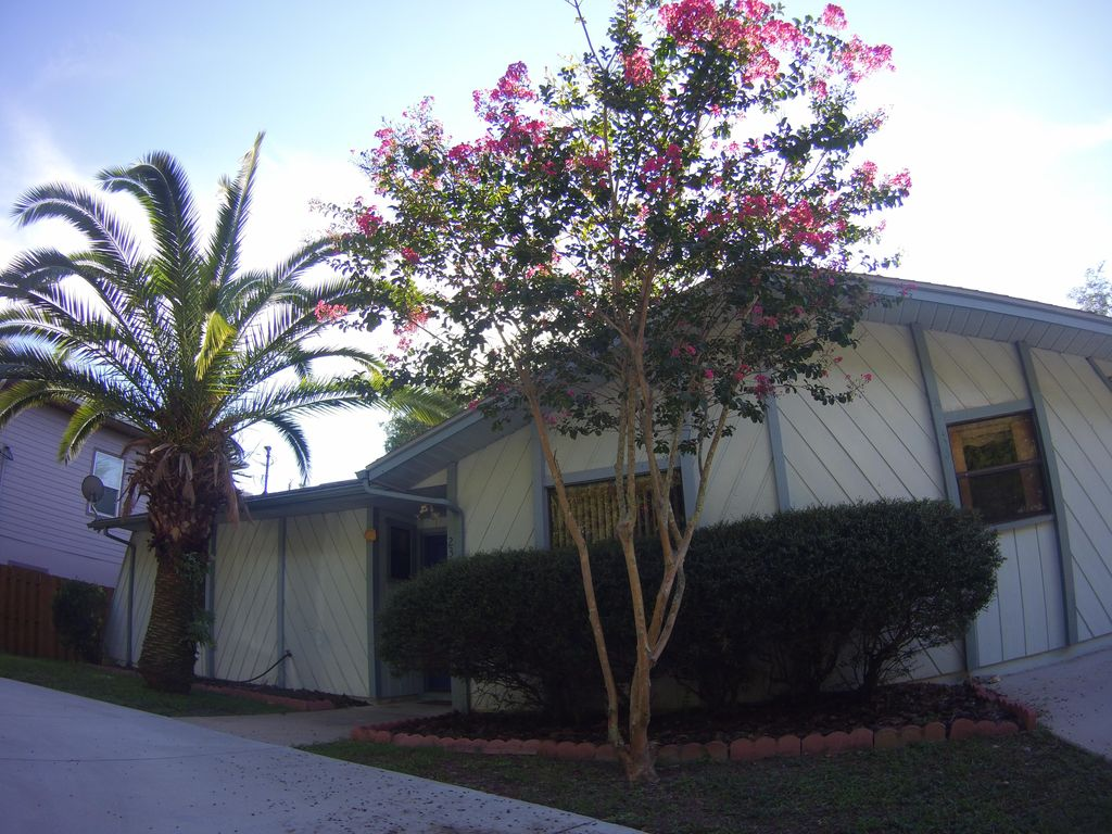 jewish singles in homosassa springs Wilder funeral home in homosassa, florida: info on funeral services, sending flowers, address / directions, & planning.