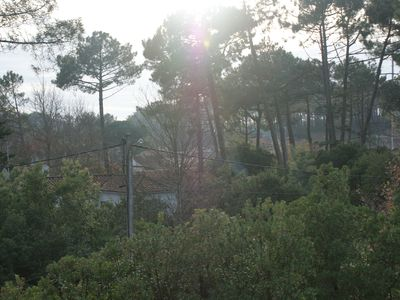Photo for Rent wooden house on the Bassin d'Arcachon / Cap Ferret