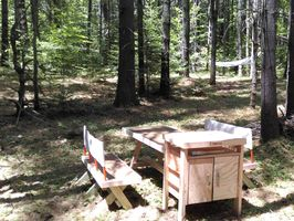 Photo for 1BR Campground Vacation Rental in Tamworth, New Hampshire
