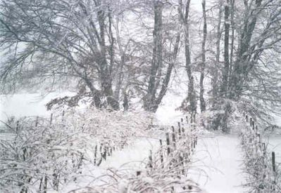Christmas in Agriturismo: an exceptional snowfall!