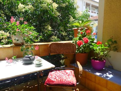 Sunny balcony surrounded by trees and plants.