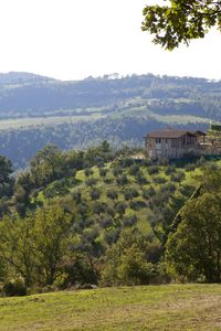 HILLTOP HOUSES IN THE CROWN OF THE UNTOUCHED LANDSCAPE