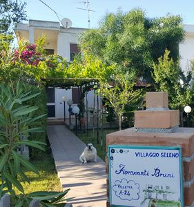 Photo for House in a residential village in Isola Capo Rizzuto (KR)