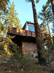 Photo for Crazy Pines- Cozy Cabin Retreat!