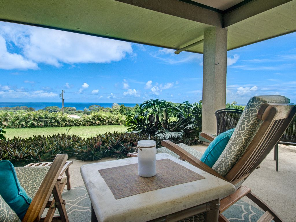 Hakalau house rental View from the