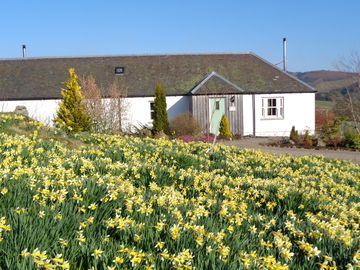 Luxury cottages in Glenshee~ hot tubs~logburners~wifi~mountain views~sleep 2/5 - New Steading Cottage