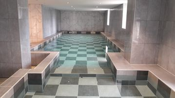 HOUSE OF LUXURY TO 50 PEOPLE WITH INDOOR HEATED POOL