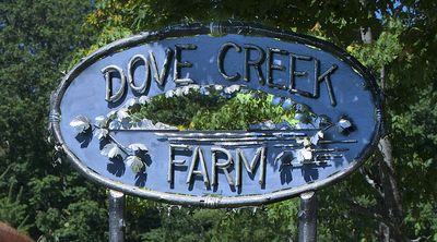 Photo for Relax and revive on 40 acres of privacy on the Dove Creek.