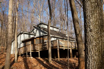 TREETOP COTTAGE: GREAT SETTING, COMFORTABLE, WELL APPOINTED.