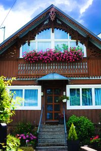 Photo for Pretty cottage in small Alsatian town 4 flowers