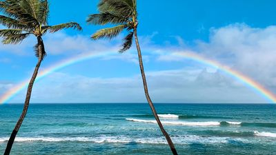Enjoy beautiful ocean front views and stunning rainbows from the privacy of this remodeled oceanfront studio at Papakea