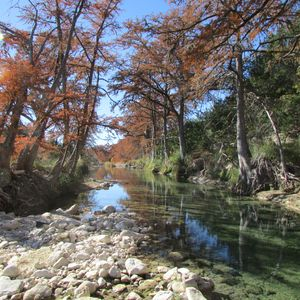 Photo for Utopia Springs at Lost Maples~Spring Fed Crystal Clear Sabinal River Frontage