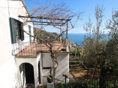 Photo for Vacation home Italo in Zoagli - 4 persons, 2 bedrooms