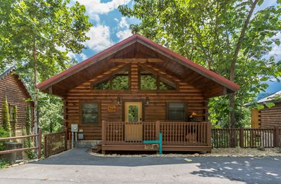 Out on a limb - 1 bedroom cabin just minutes away from downtown Gatlinburg  - Gatlinburg