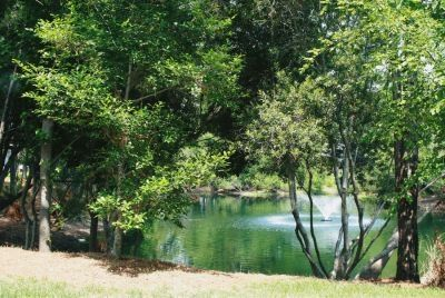 Photo for Spacious Carolina Waterfront Rental !!!