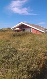 Photo for Lovely wooden house in a beautiful location - close to beach, dune heath and forest