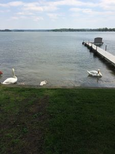 Photo for Pet And Family Friendly on Gun Lake close to state park,restaraunts and casino.