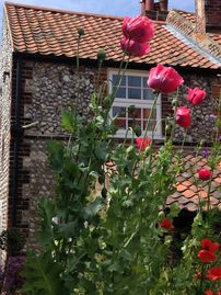 Charming brick and flint cottage - two double bedrooms.