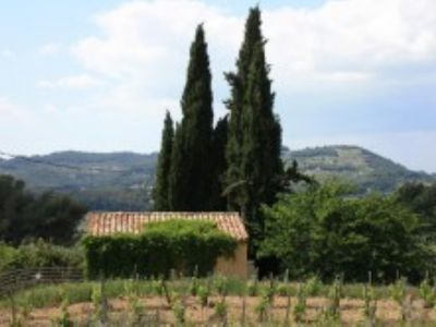 Photo for Charming cottage located in the heart of a Provencal farmhouse and its winery